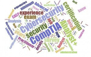 cyber security analyst+