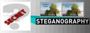 Data Encryption and Steganography