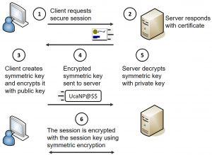 HTTPS Transport Encryption